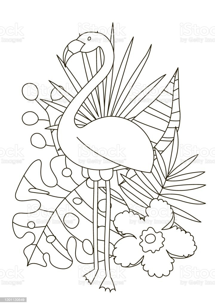 drawing coloring pages for children and adults a