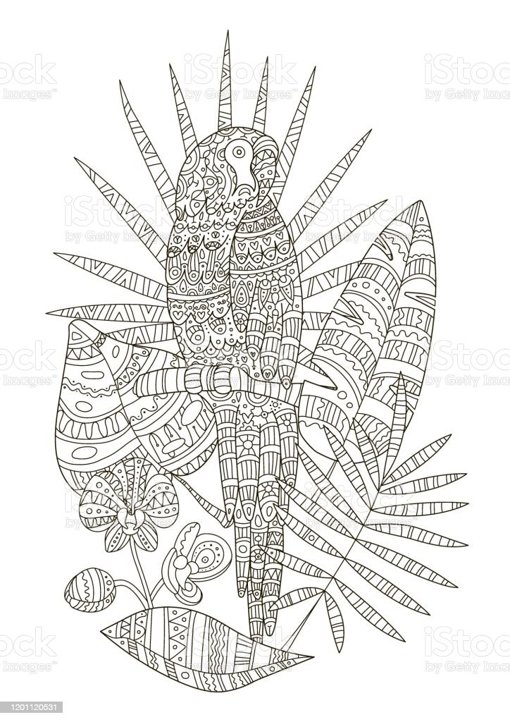 Hand Drawing Coloring Pages For Children And Adults A Beautiful Pattern  With Small Details For Creativity Antistress Coloring Book With Tropics A  Parrot Sits On A Branch Among The Leaves Of Monster