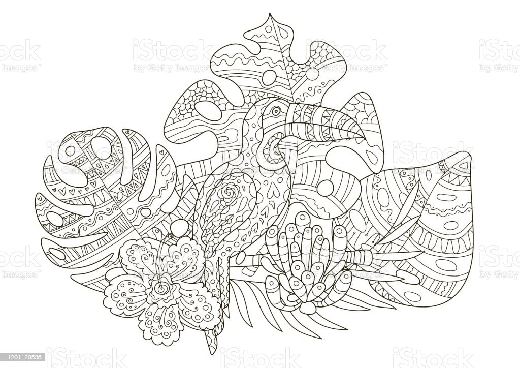Hand Drawing Coloring Pages For Children And Adults A Beautiful Pattern  With Small Details For Creativity Antistress Coloring Book With  Toucantropical Flowers Orchid Monstera Palm Stock Illustration - Download  Image Now - IStock