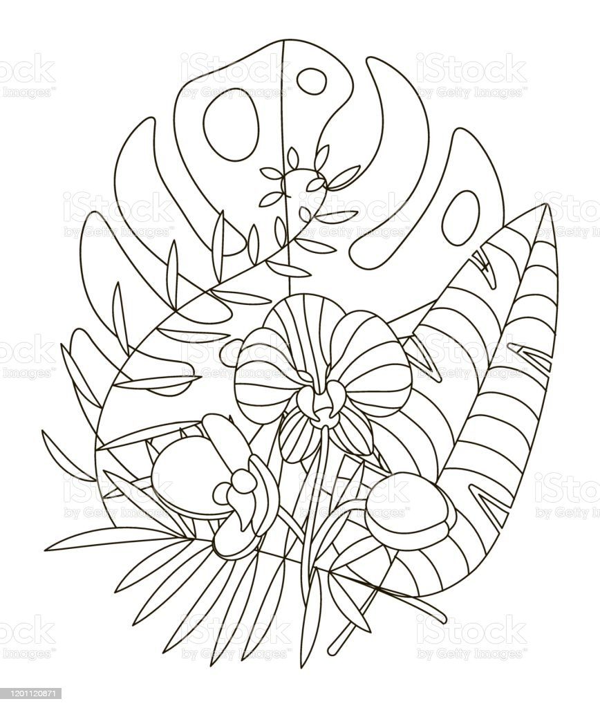 Hand Drawing Coloring Pages For Children And Adults Linear Style