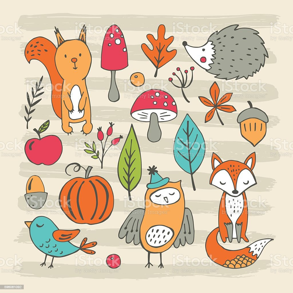 Hand drawing elements for autumn and fall design – Vektorgrafik