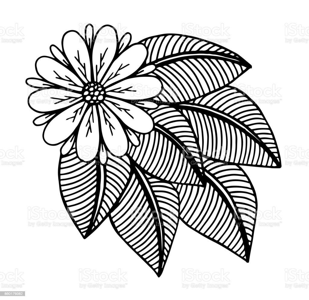 Dessin Fleur De Main Doodle Fond Illustration Fleur Jardin Formel