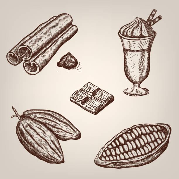 hand zeichnung illustration eines cacao bohnen, kakao und zimt. - tortenriegel stock-grafiken, -clipart, -cartoons und -symbole