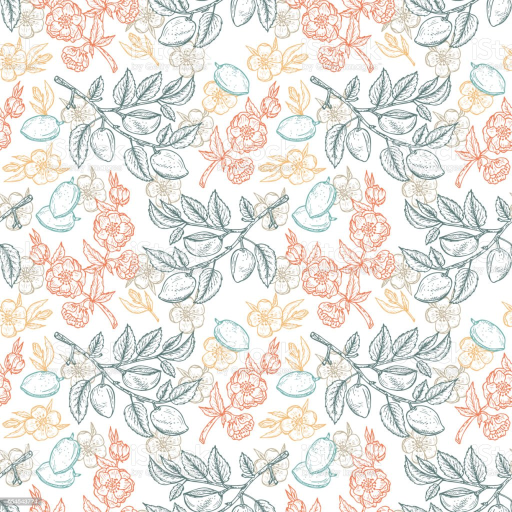 Hand drawn Almond Seamless pattern. Flowers, Branches with leaves and immature fruit. Floral background. Vector illustration. vector art illustration