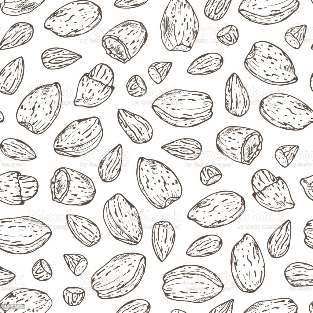 Hand drawn Almonds Seamless pattern. Nuts and kernels. Vector illustration vector art illustration