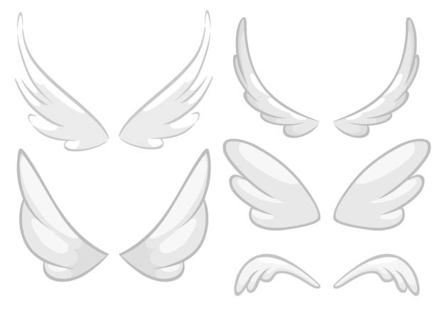 hand drawn angel, fairy or bird wings set. outlined drawing elements isolated on white background. vector illustration. - animal wing stock illustrations
