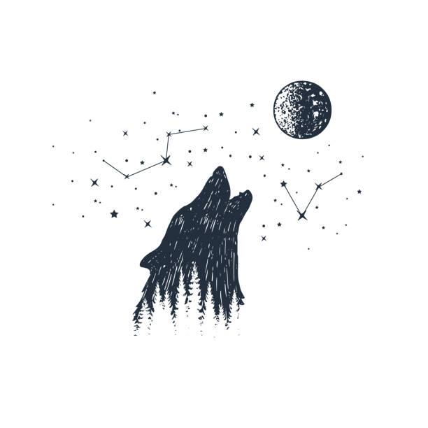 bildbanksillustrationer, clip art samt tecknat material och ikoner med hand dras djur och stjärnbilden vektor illustrationer. - varg