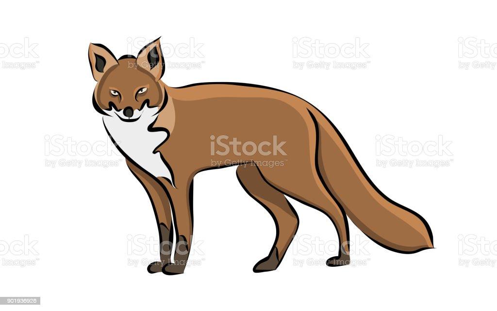 Hand drawn animal fox vector art illustration