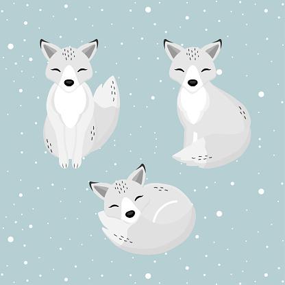 Hand drawn Arctic Fox in the winter.
