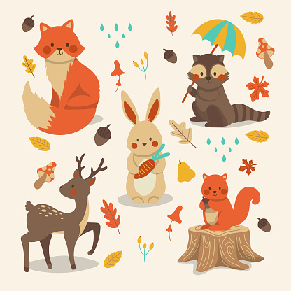 Hand drawn autumn forest animals collection Vector illustration