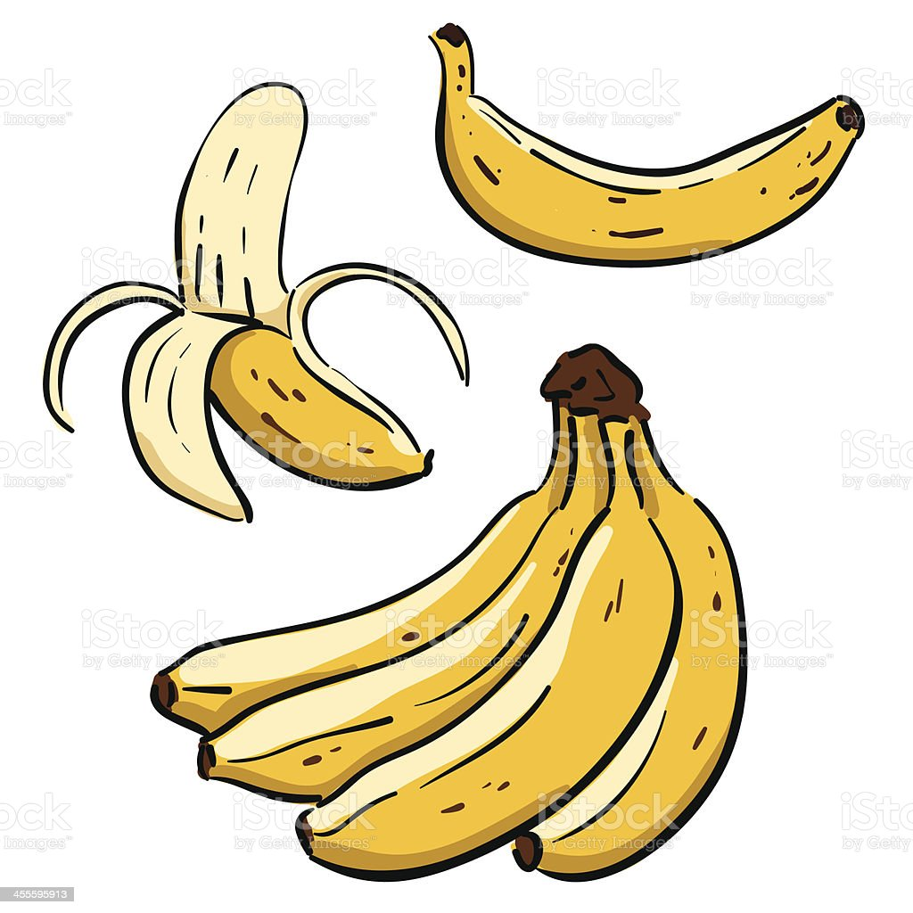Hand drawn Bananas vector art illustration