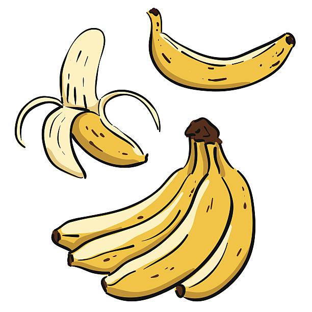 illustrazioni stock, clip art, cartoni animati e icone di tendenza di mano disegnata banane - banana