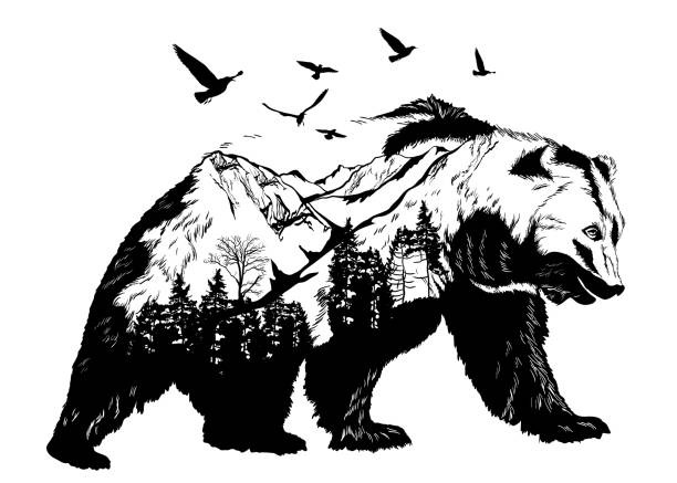hand drawn bear for your design, wildlife concept - vogel tattoos stock-grafiken, -clipart, -cartoons und -symbole