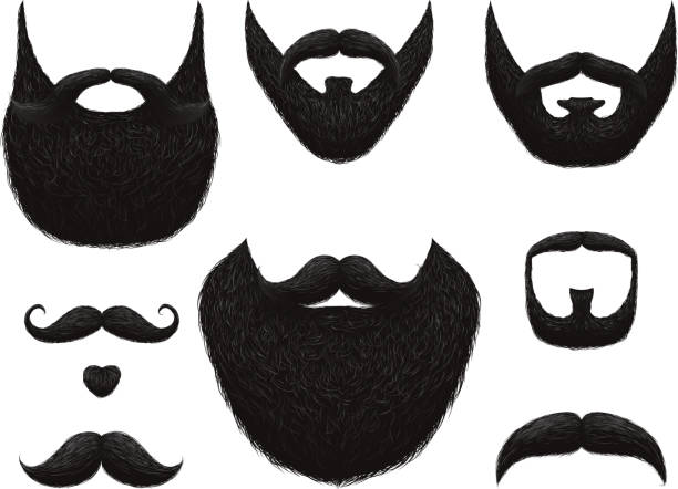 ilustrações de stock, clip art, desenhos animados e ícones de hand drawn beards and mustaches vector collection - barba