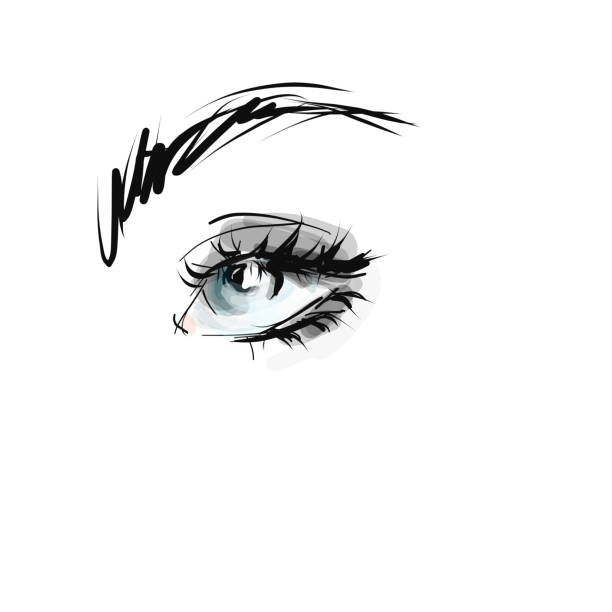 Hand drawn beautiful woman's eye with long eyelashes Sketch, vector beautiful woman stock illustrations