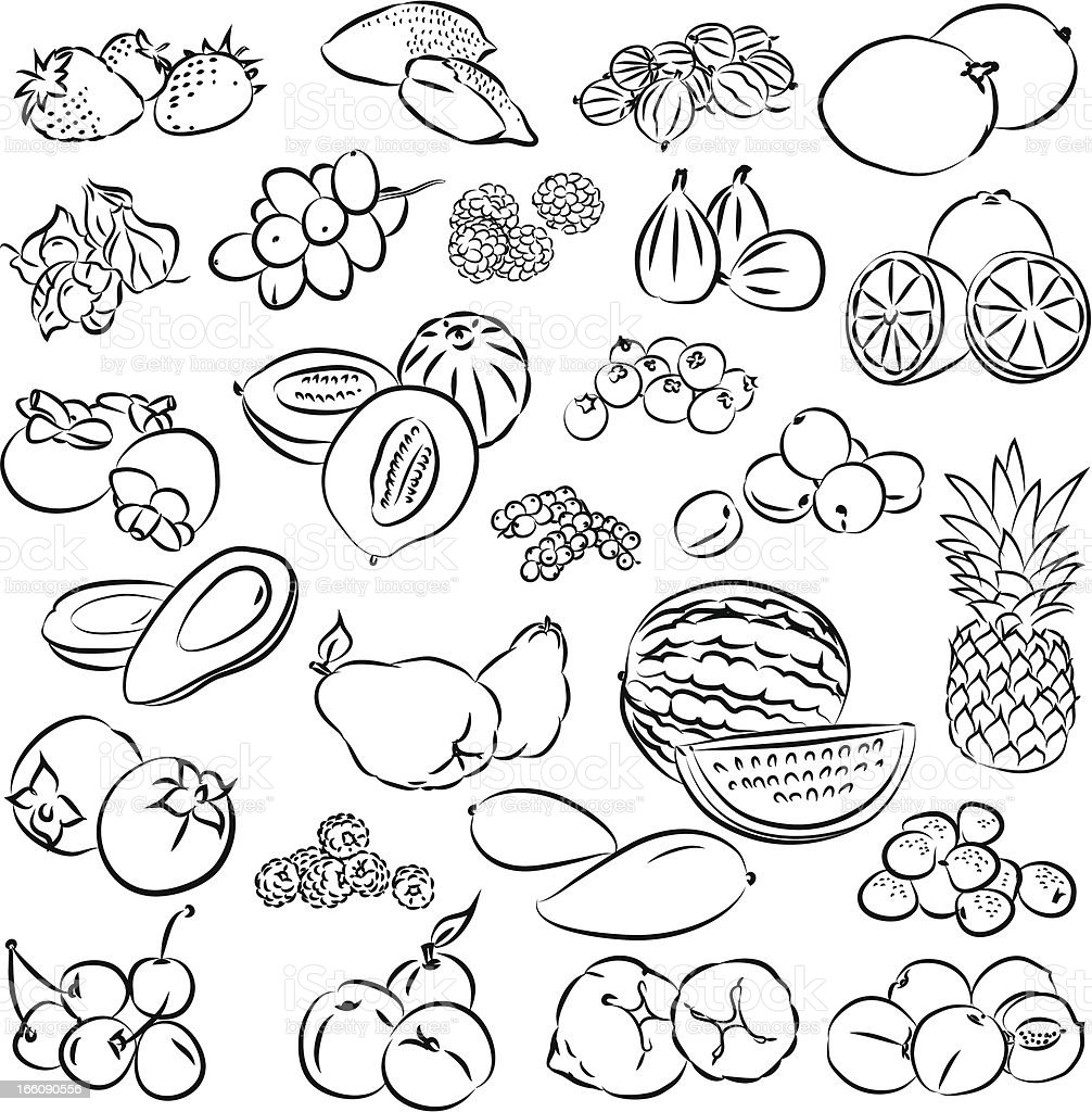 Hand drawn black and white fruit and vegetable graphics royalty-free stock vector art