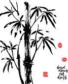Hand drawn black ink bamboo tree branch.