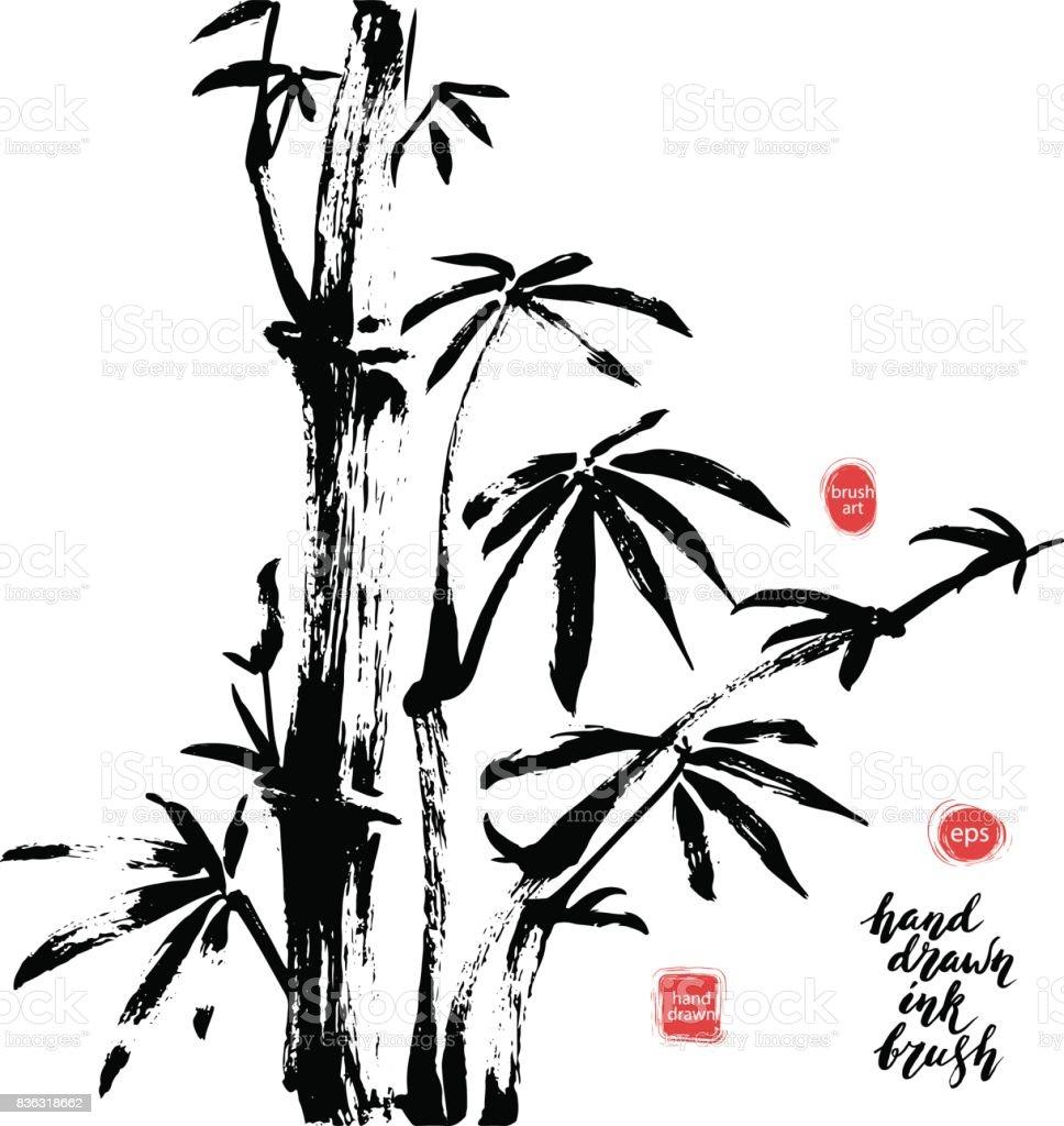 Hand Gezeichnet Schwarzer Tinte Bambus Ast Stock Vektor Art Und Mehr