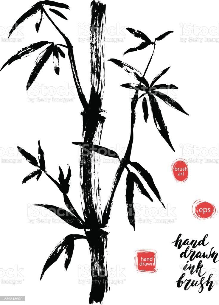 Hand drawn black ink bamboo tree branch. vector art illustration