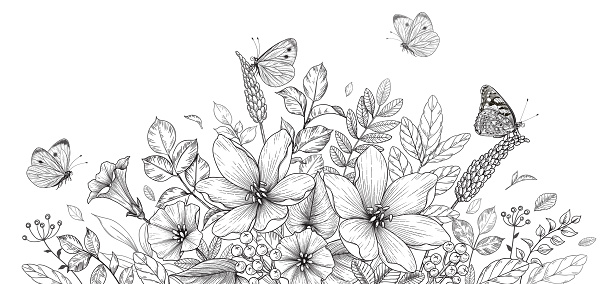 Hand drawn blooming flowers and butterflies