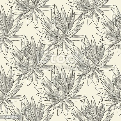 Hand drawn blue agave vector seamless pattern. Succulent plants wallpaper. Engraving vintage style. Vector illustration.