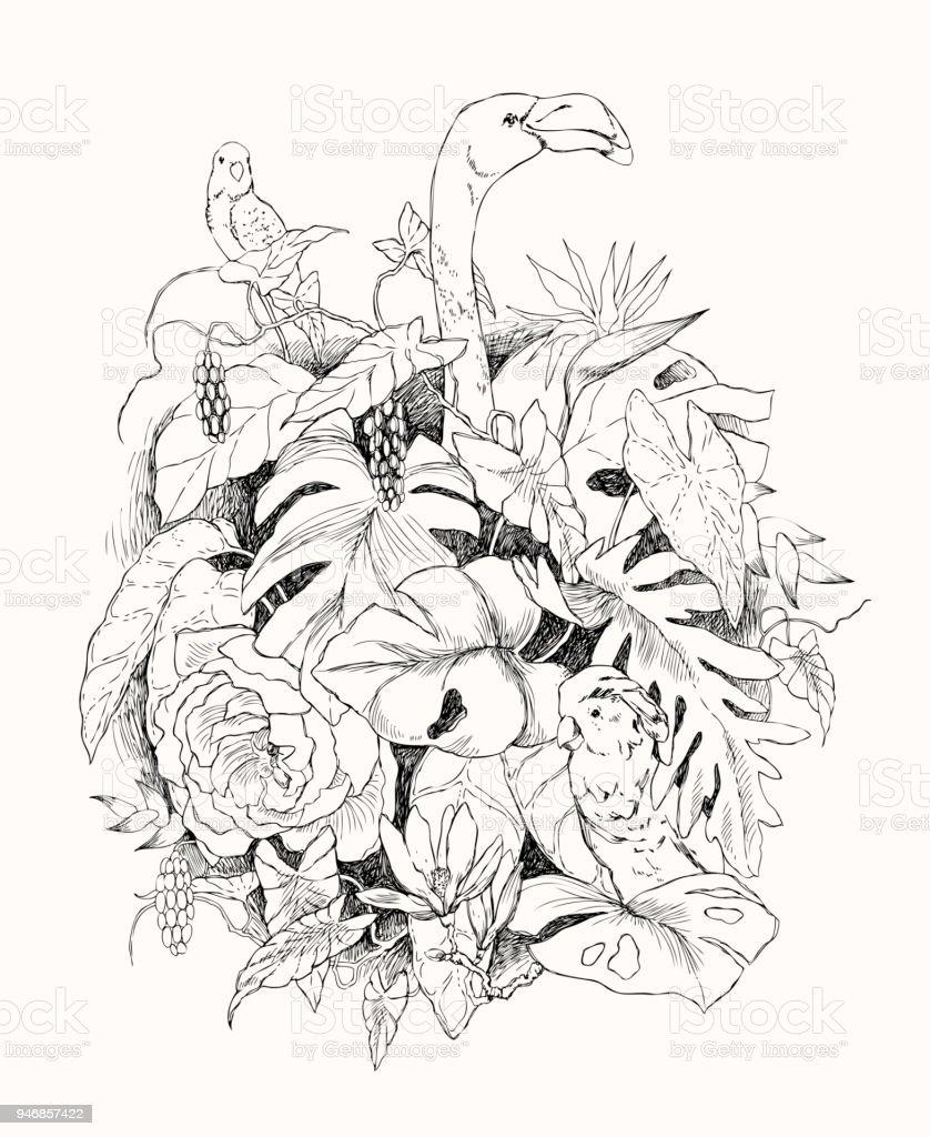 Handgezeichnete Zweige Und Blätter Von Tropischen Pflanzen ...