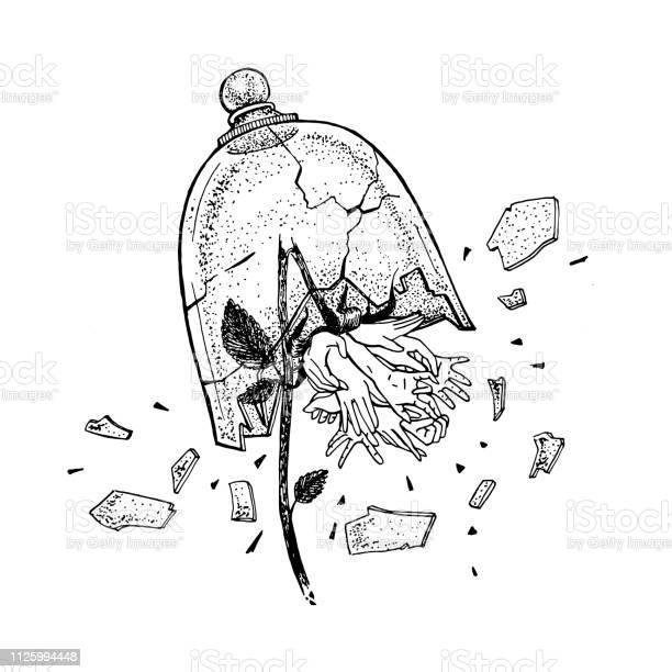 Hand drawn broken wild rose in view of hands under the glass tattoo vector id1125994448?b=1&k=6&m=1125994448&s=612x612&h=fqxrl4zl3dyvob8bl60qnad9j88ianuedcoisd7nblm=