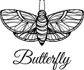 Hand drawn butterfly. Doodle style logo. Excellent for t-shirt design or tattoo.
