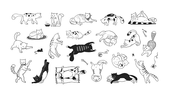Hand drawn cats. Funny and cute pets, doodle black different kittens and cats sitting lying and playing. Vector ink sketch characters