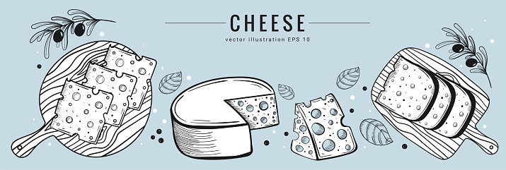 Hand drawn cheese set banner template. Sketch style