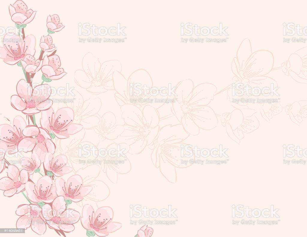 手描き桜背景 - イラストレーションのベクターアート素材や画像を多数ご