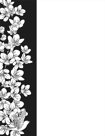Hand Drawn Cherry Blossoms Background