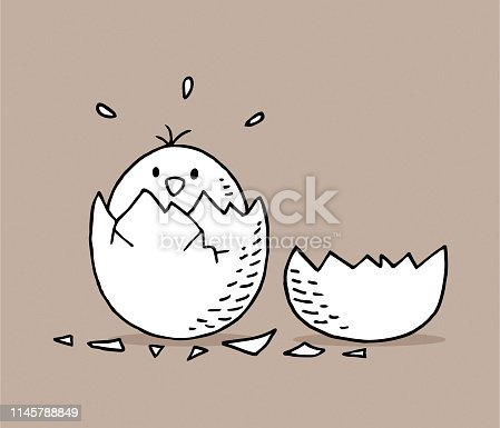 istock Hand drawn chick in egg shells 1145788849