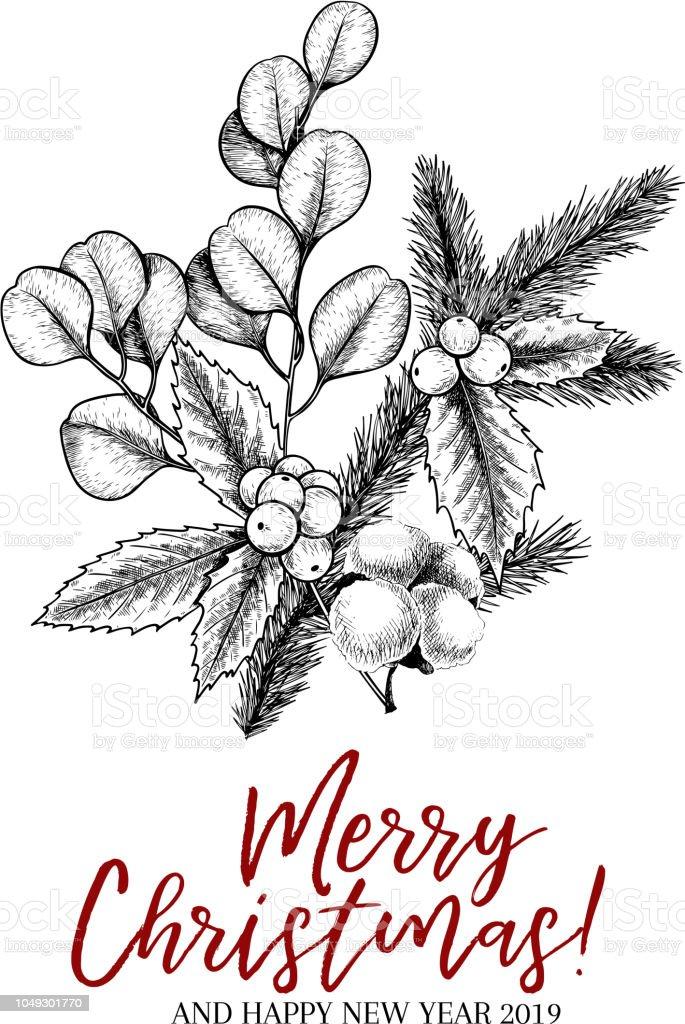 Christmas Greenery Vector.Hand Drawn Christmas Plants Vector Pine Branch Fir
