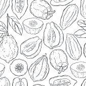 istock Hand drawn citron. 1207112987