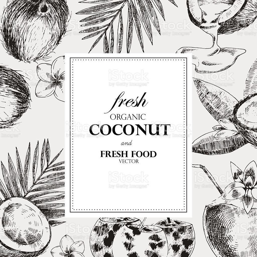 Hand drawn coconut design template. Retro sketch style vector tropical vector art illustration