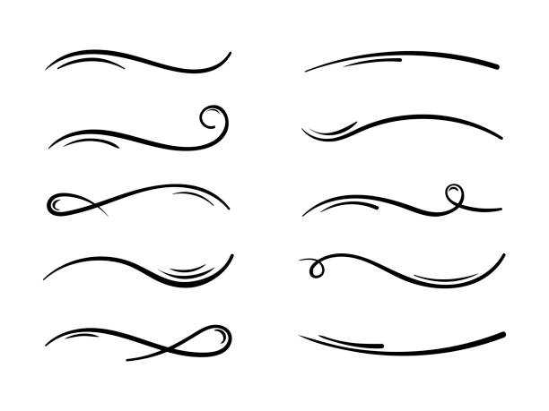 hand drawn collection of curly swishes, swashes, swoops. calligraphy swirl. highlight text elements - uderzać stock illustrations