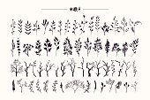 Tree branches and plants silhouettes made with ink. Hand drawn clipart illustration collection of rustic, floral design elements. Wood twigs, sticks, forest, flowers and leaves. Isolated vector set on white background.
