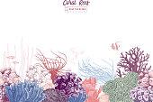 Hand drawn colorful seamless coral border. Vector illustration