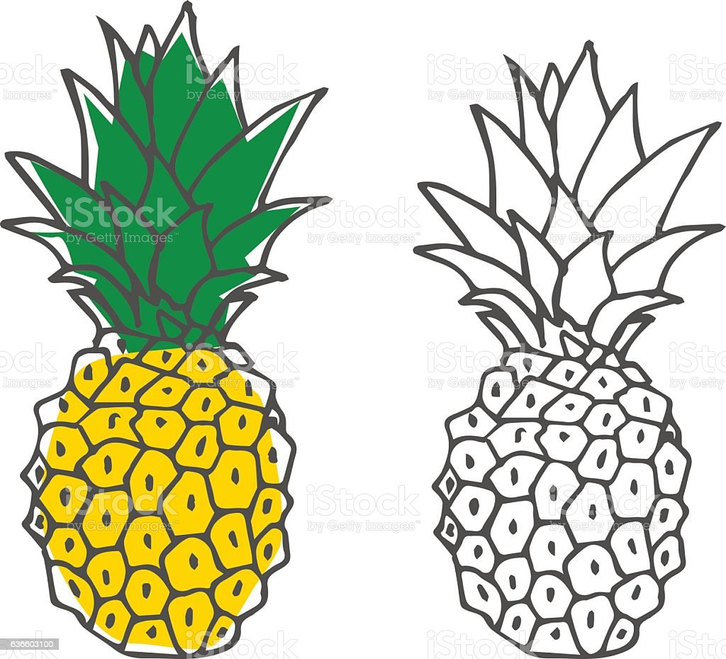 hand drawn colorful pineapple stock vector art amp more