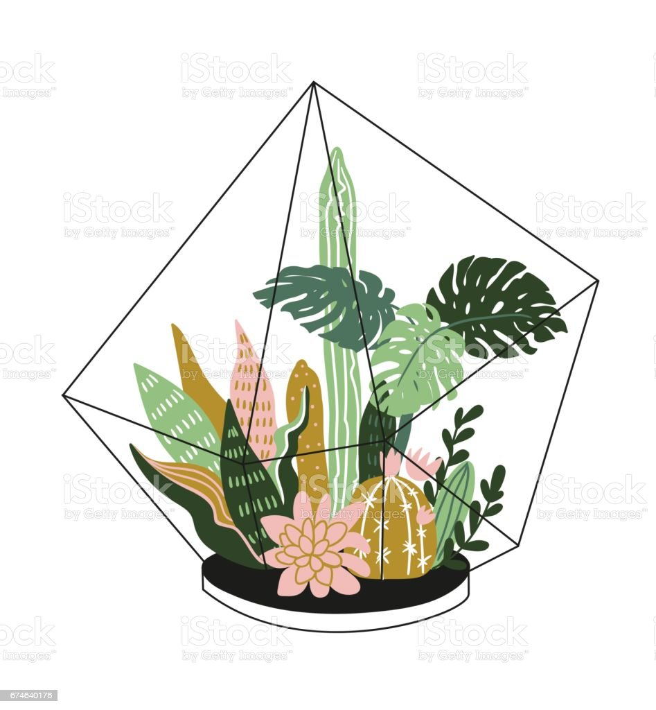Hand drawn contained tropical house plants. Scandinavian style  illustration, modern and elegant home decor