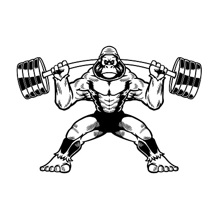 Hand drawn cool gorilla with fitness barbell in cartoon character. Wild monkey isolated on white background. Stay cool. Vector illustration for t-shirt design, apparel and other uses