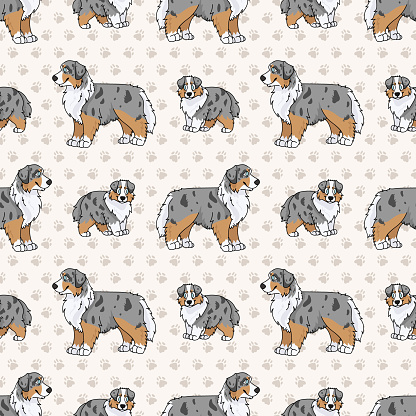 Hand drawn cute australian shepherd breed dog seamless vector pattern. Purebred pedigree domestic dog paw background. Dog lover Australia hunting pet all over print. Kennel pooch.