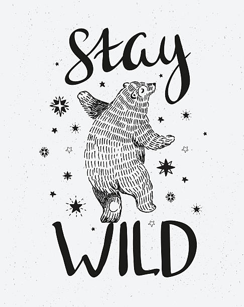 stockillustraties, clipart, cartoons en iconen met hand drawn dancing bear. - tribale kunst