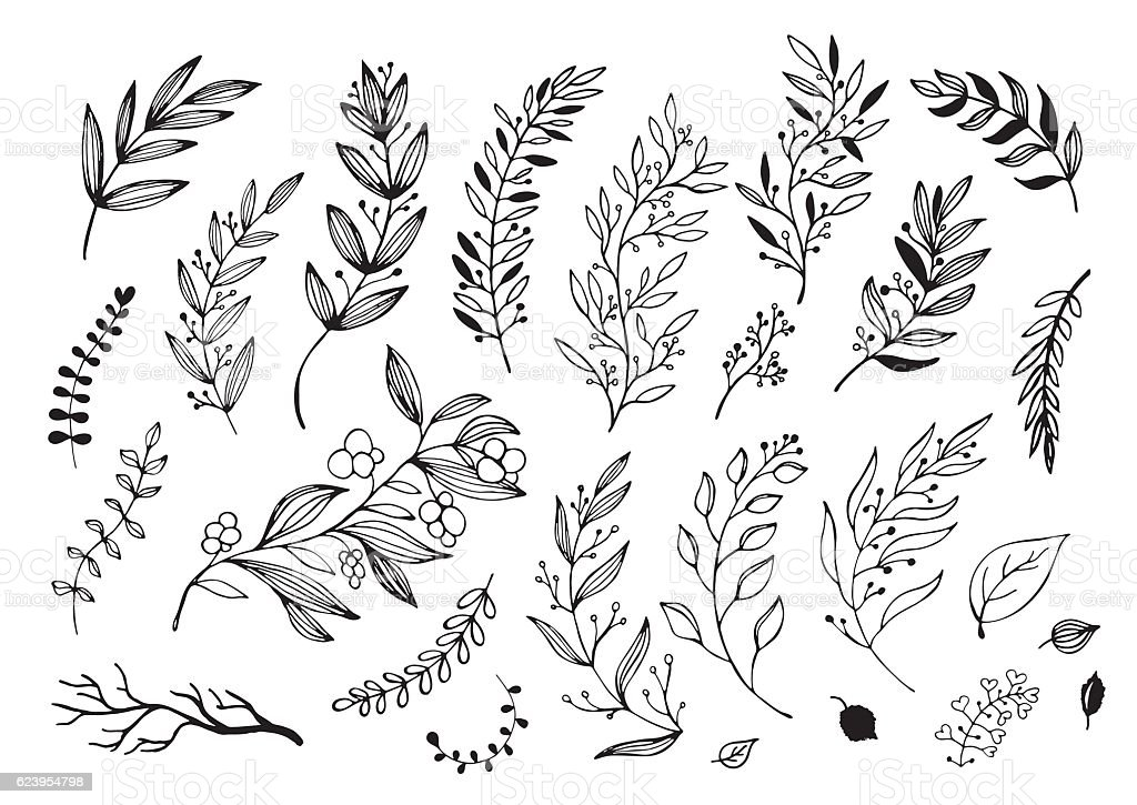Hand drawn decorative christmas holly, misletoes, plant branches royalty-free hand drawn decorative christmas holly misletoes plant branches stock illustration - download image now