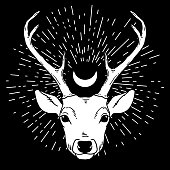Beautiful hand drawn tribal style deer head with crescent moon. Magic vintage vector illustration in black and white. Spiritual art, yoga, boho style, nature and wilderness.
