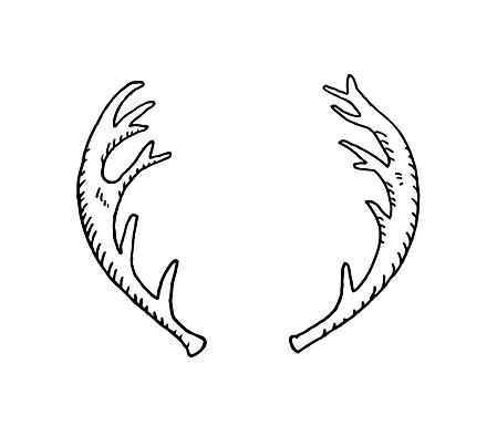 Hand drawn deer horn