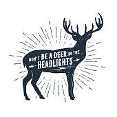 Hand drawn deer vector illustration.