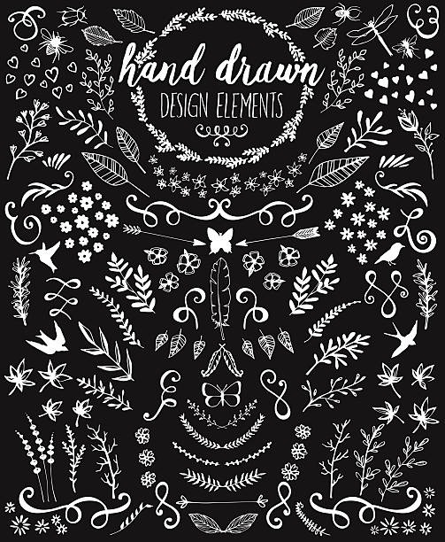 Hand drawn design elements on a black chalkboard vector art illustration