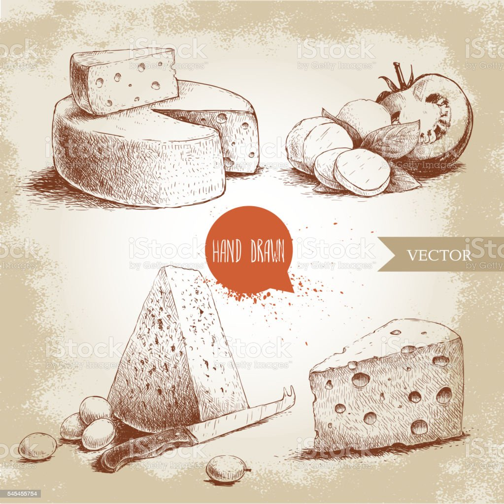 Hand drawn different type of cheese set. Sketch style. vector art illustration